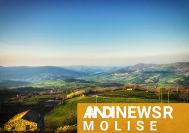 ANDI News Molise